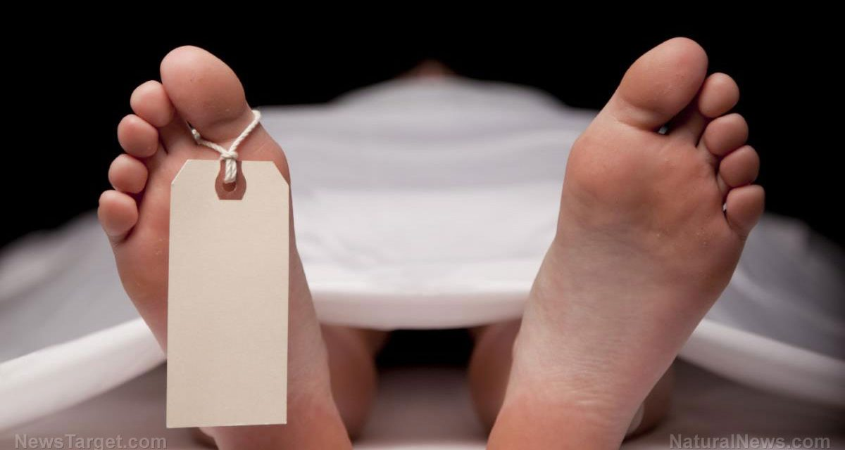 California passes legislation allowing the liquification of human bodies